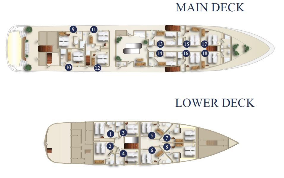 MS Swallow Deck Plan