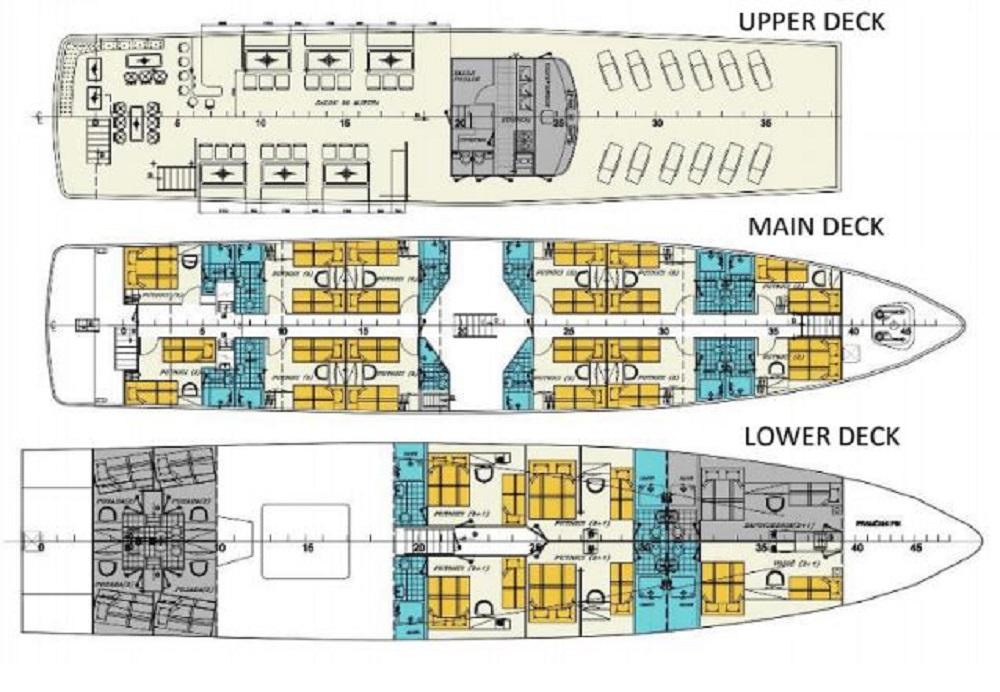 Seagull deck plan